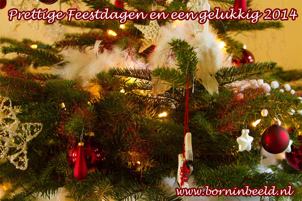 kerstgroet-2013-borninbeeld